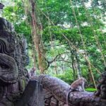 5 Great Activities You Should Try In Bali